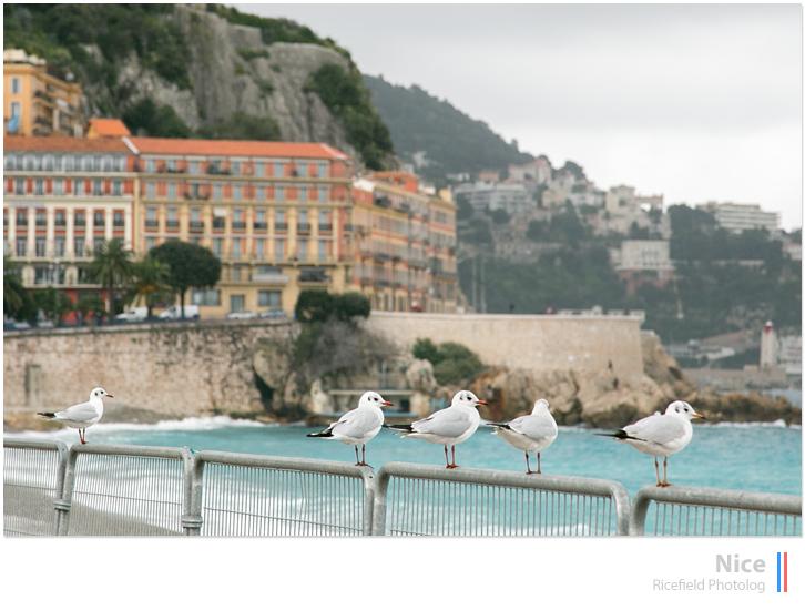 ニース nice cote d'Azur